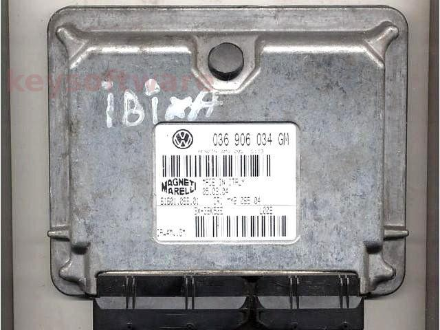 Defecte Ecu Seat Ibiza 1.4 036906034GM IAW 4MV.GM BBY